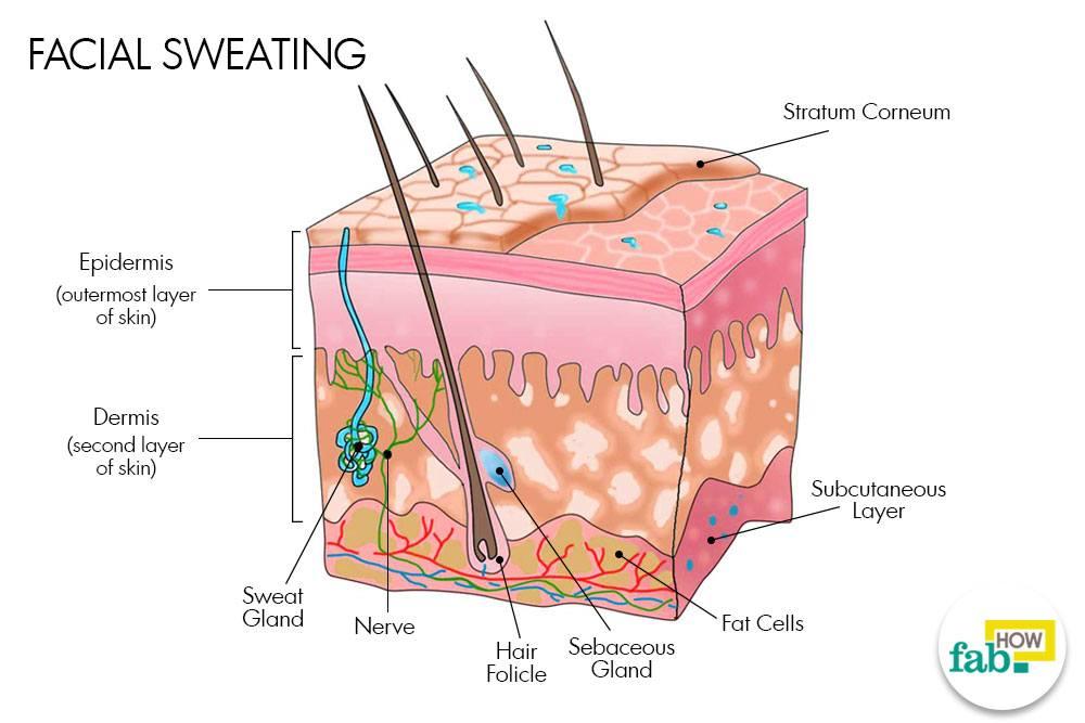 चेहरे पर आने वाले पसीने को कम करने के घरेलू उपाय