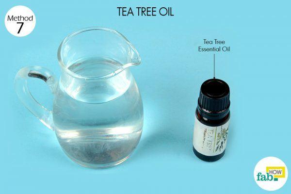 टी ट्री तेल के इस्तेमाल के लिए आवश्यक सामग्री