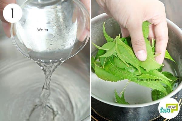पैन में नीम की पत्तियों को पानी में उबाल लें